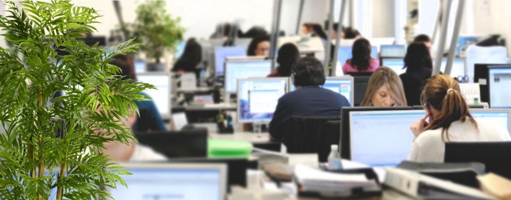 Sitel recruta 150 colaboradores para os dois centros de Lisboa