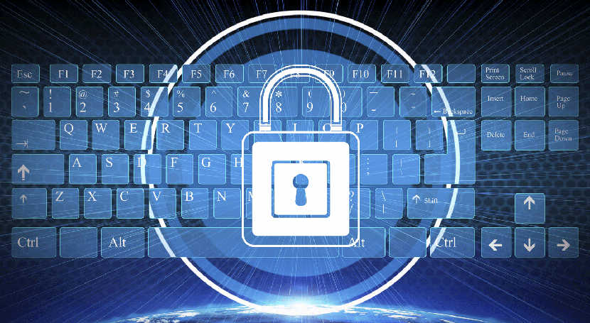 UE e Parlamento Europeu querem melhorar segurança na Internet