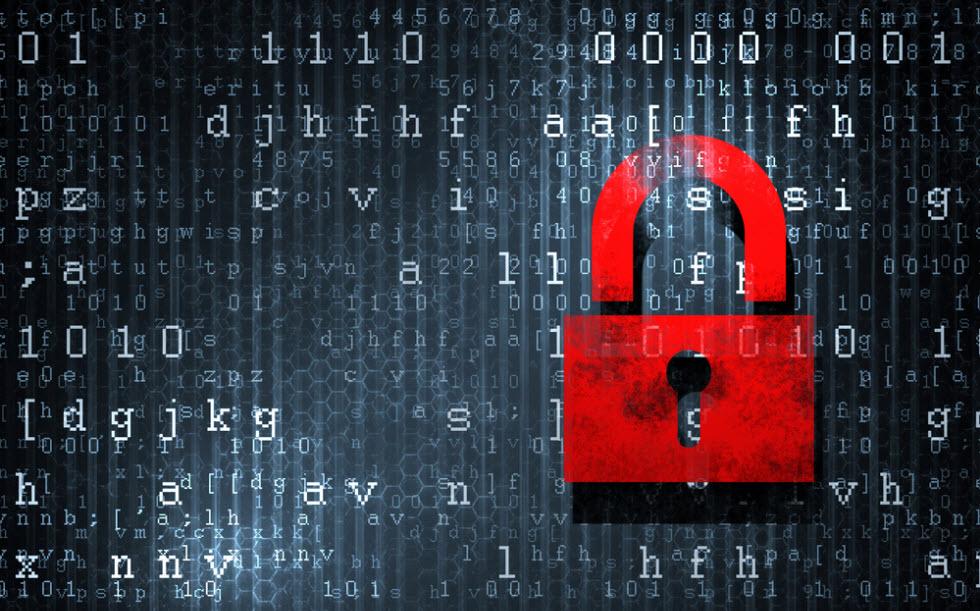 Portugal: Empresas usam firewalls como principal ferramenta de segurança